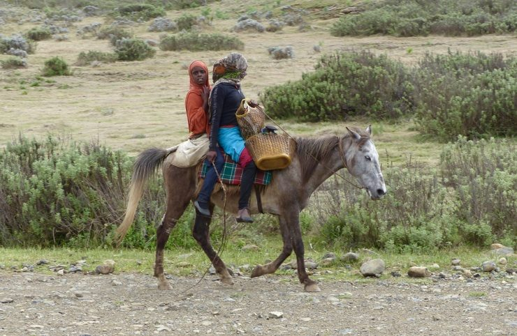 Locals travelling by horseback - Ethiopia. Africa safari adventure