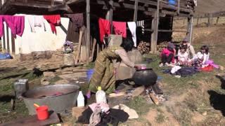 EPIC INDIA & BHUTAN: A Family Holiday January 2015