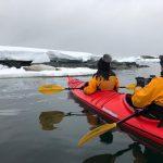 Seal watching - Epic Antarctica 2019