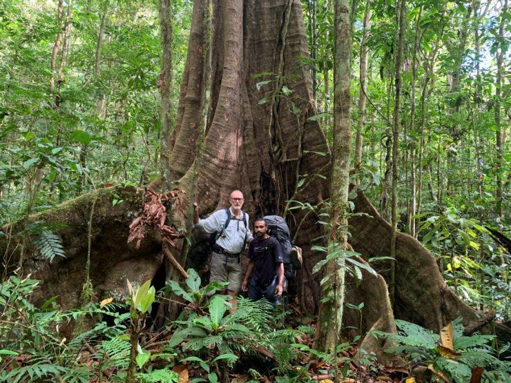 Primary rainforest Kokoda Track Epic PNG