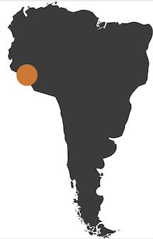 Epic Peru & Amazon
