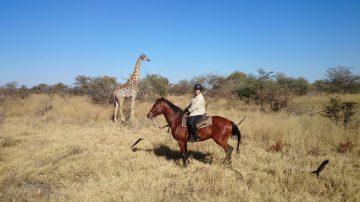 Solo Safari to Botswana + Zambia