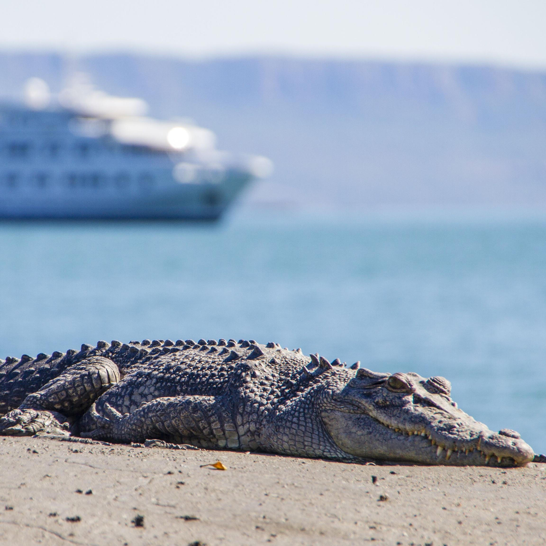 13 Days Luxury Cruising the Kimberley